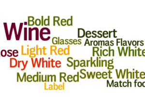 Wine Guide Infographics